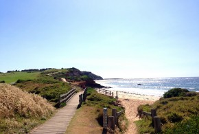 Five Fabulous Pram-Friendly Walks on the Northern Beaches